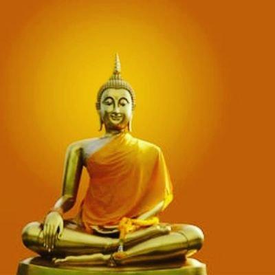 Buddha Days