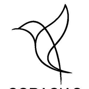 Coracias projects pvt. ltd (@CoraciasL) Twitter profile photo