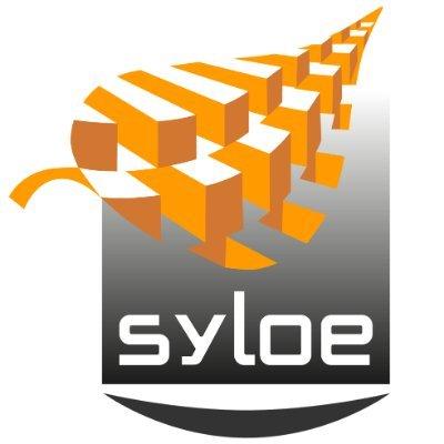 syloe_sarl