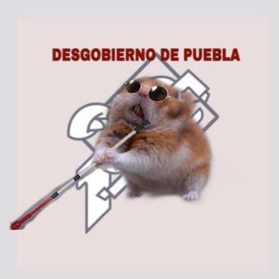 Desgob Puebla