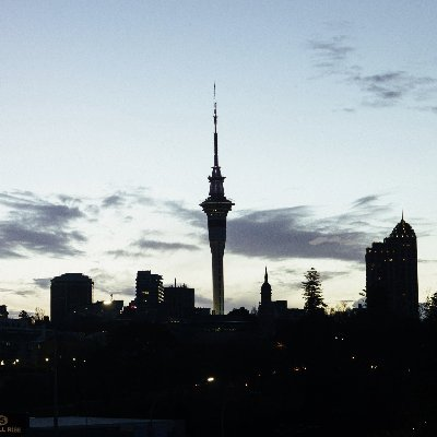 every lot auckland