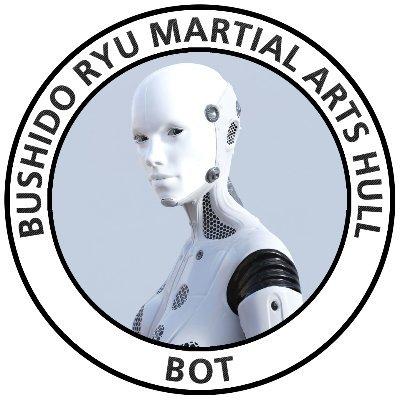 Bushido Ryu Martial Arts Hull - BOT