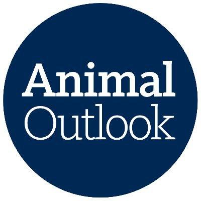 @AnimalOutlook
