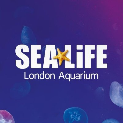 @london_aquarium