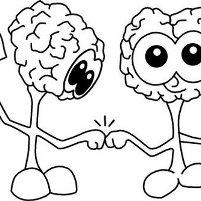 The Brainy Bunch On Twitter We Made A Diagram Of The Inside Of An