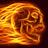 Wyze Wildfire