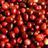 CRANberriesFeed