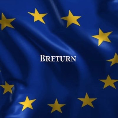 ❄️ Brexit resistance #rejoinEU #RussiaReport