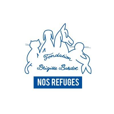FBB / La vie de nos 3 refuges et des animaux (@FBB_Refuges) | Twitter