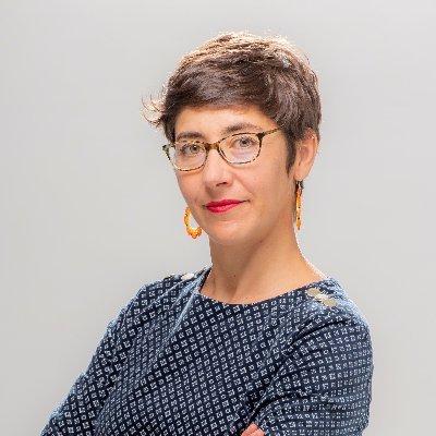 Dr Elvira Perez Vallejos