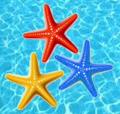 3 Starfish Designs
