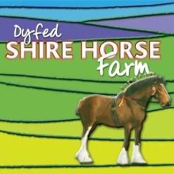 Dyfed Shire Horse Farm (@DyfedShires) Twitter profile photo