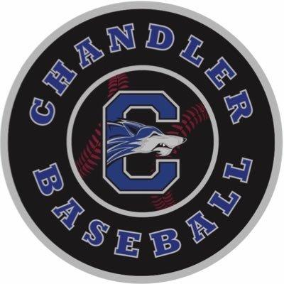 Best Chandler Baseball Bats