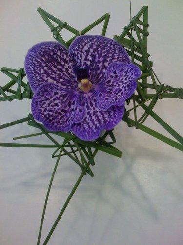 livraison fleurs livrer fleurs twitter. Black Bedroom Furniture Sets. Home Design Ideas