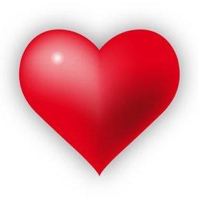 Love ❤️ Life ❤️ Elevate