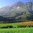 Maties Stellenbosch