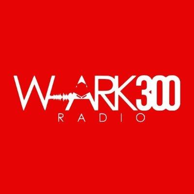 W-ARK 300