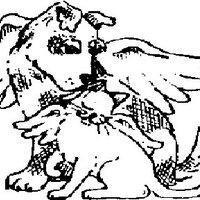 Angel Paws