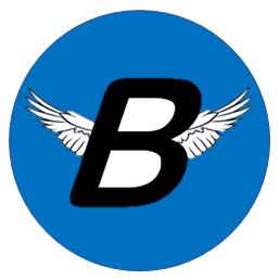 Breitflyte Airline News Network