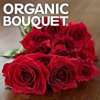Organic Bouquet | Social Profile