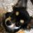 @hinachanpe55 Profile picture