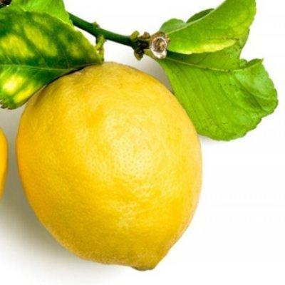 Toxic Lemon