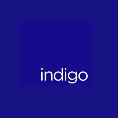 Indigo Environmental Group