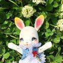 yume_dolls