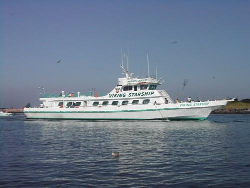 Viking fleet vikingfleet twitter for Viking fleet montauk fishing report