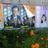 お笑い日本共産党(お母さん、他党のポスターの上は貼ってもいいところ?) (@onrRekapE0WTn08)