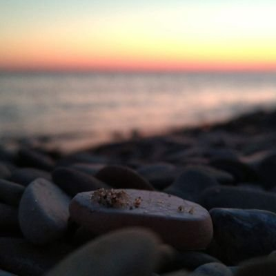 забытая у моря (@raxacoric)