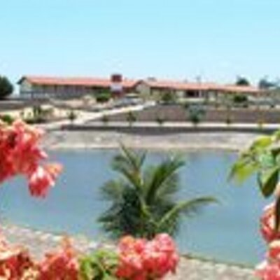 Macajuba Bahia fonte: pbs.twimg.com
