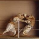 Ratfight reasonably small