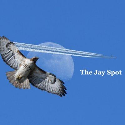 The Jay Spot