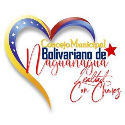 Concejo Mcpal. Bolivariano de Naguanagua