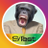 SiTest_heatmap avatar
