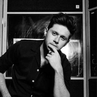 Niall Horan Fan Projects