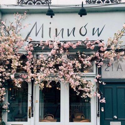 Logo de la société Minnow