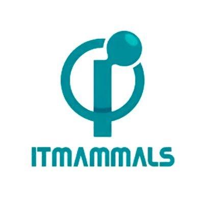 Itmammals
