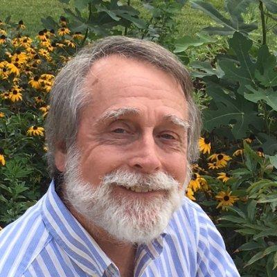 Mike Wilson Writer