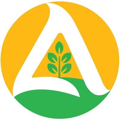 Alan Groups