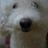 wweenn's avatar'