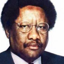 Ali Muhammad Diallo