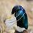 LordMauschen's avatar'