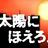 たうりん (@TowRin)