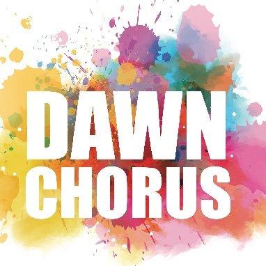 DawnChorusIreland