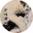 みけねこ(katzemike)'s icon