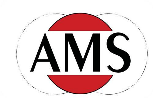 Ams - фото 4