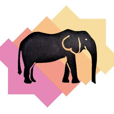 An Elephant Never Forgets (@AENF_education) Twitter profile photo