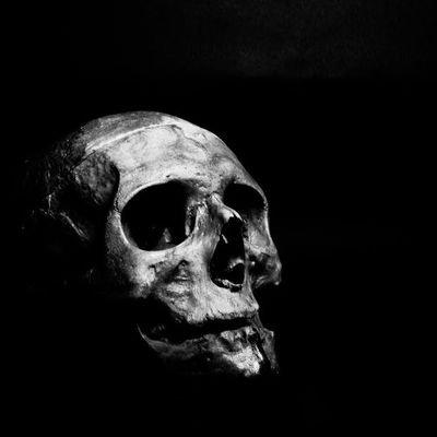 💀Dark Scene Corporation💀 (@darkscenecorp) Twitter profile photo